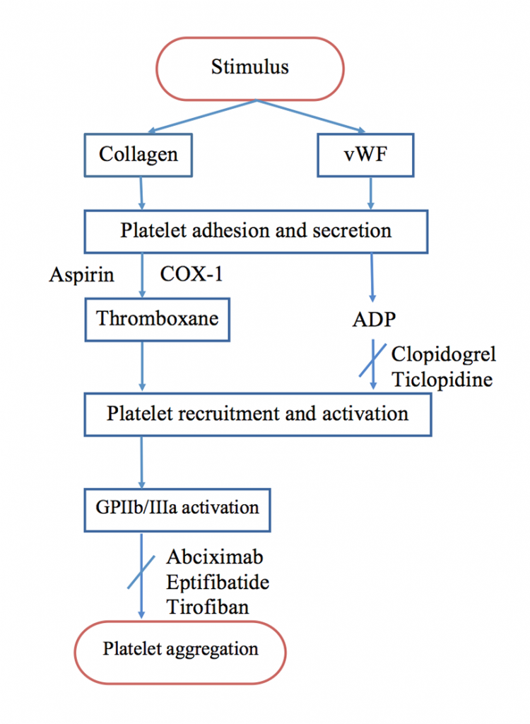 Mechanism of action of antiplatelet agents
