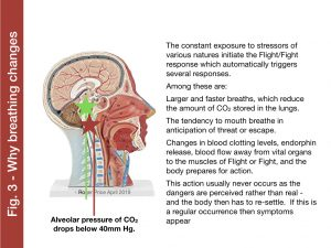 Why breathing changes co2