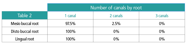 Table 2: Number of canals by root