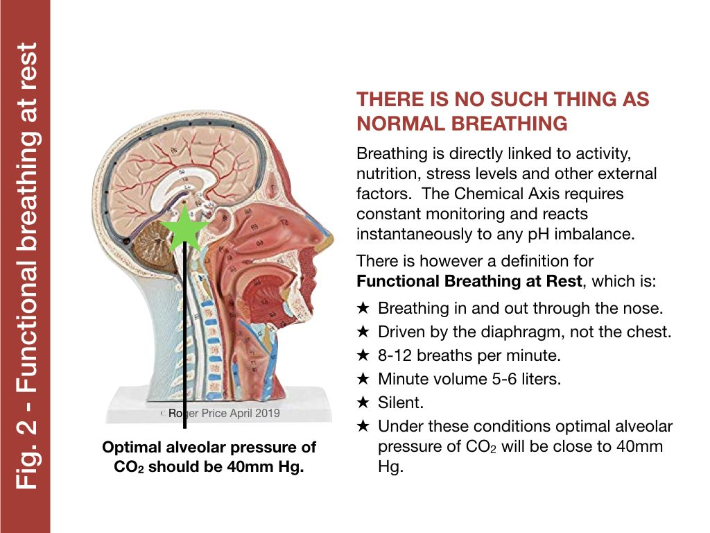 Functional breathing at rest co2